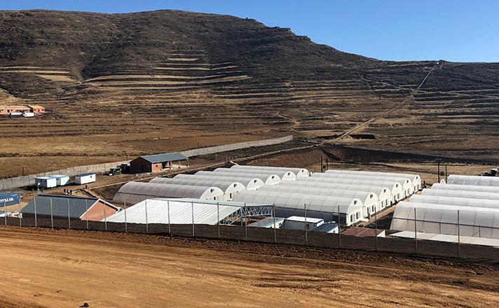 Medigrow Lesotho Pty Ltd production plant landscape image